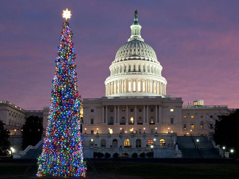 Natal com a árvore no capitólio (fotos Divulgação)