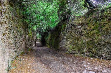 Tramo del Camino de Santiago de Invierno