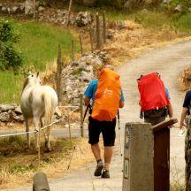 Caminando entre Ribadesella y Llanes