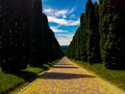 Прогулки по Кисловодскому парку. Что посмотреть?
