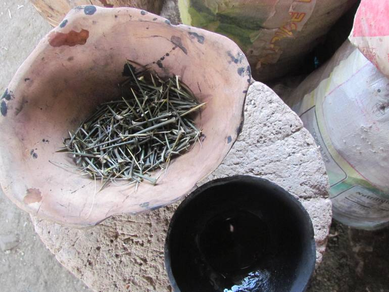 Materials used: Pomelo thorns (as needle) and liquefied charcoal (as ink) - Kalinga