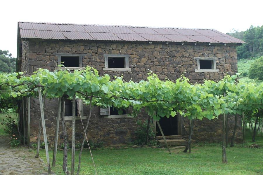 Cantina Strapazzon - Caminhos de Pedra no Vale dos Vinhedos.