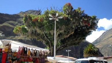 Pisaq em Cuzco