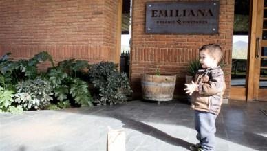 Degustação na Vinícola Emiliana
