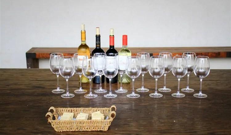 Tour degustação na Vinícola Undurraga em Santiago por conta própria