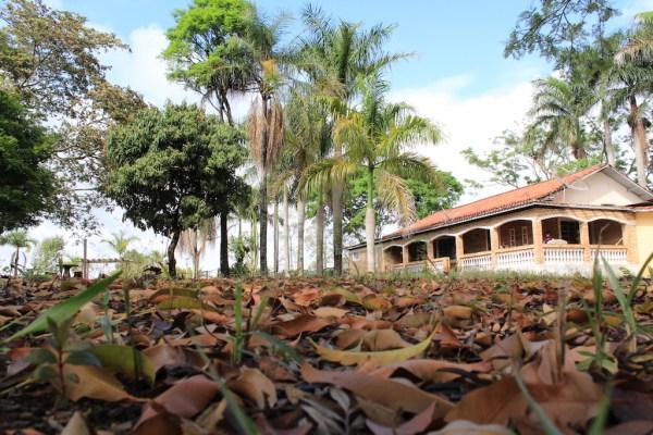 Onde dormir em Sapopema: Review da Fazenda Abaeté.