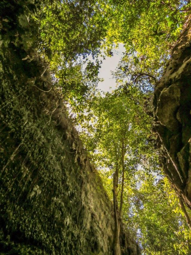 parque estadual do Jalapao 3