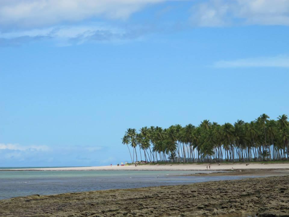 Praia dos Carneiros: como chegar e o que fazer neste paraíso de PE