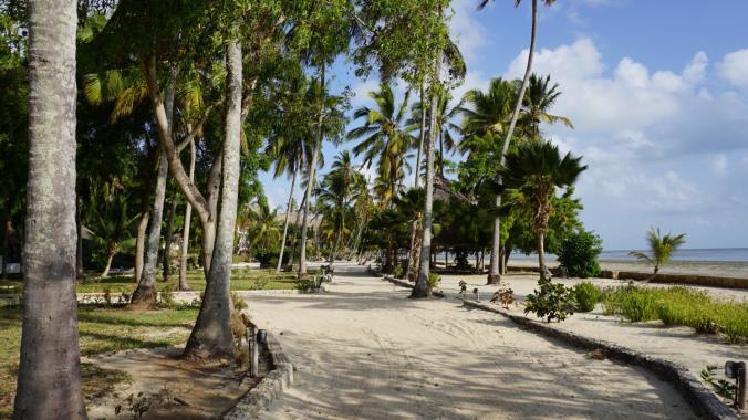 Blue Safari - hotel resort1