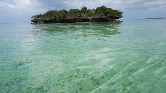 Blue Safari - island