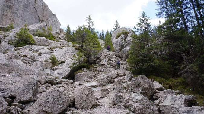 Bucovina - rocks
