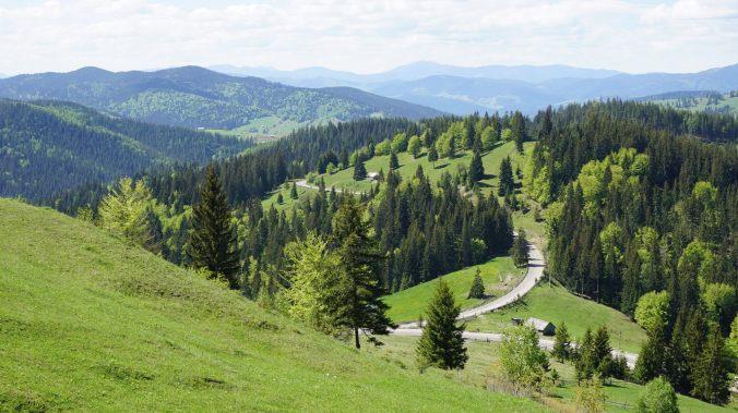 Bucovina - view