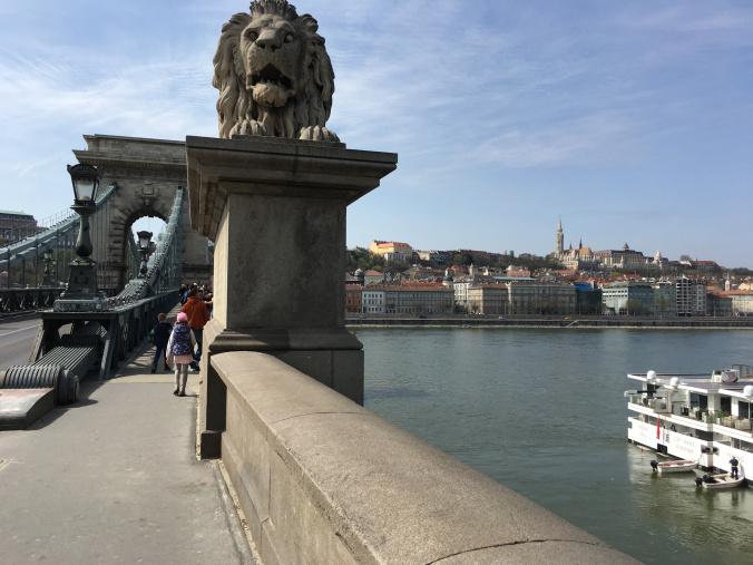 Budapesta - lion bridge