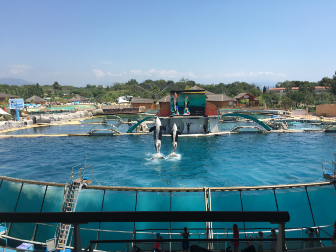 Cannes - marineland antibes 6