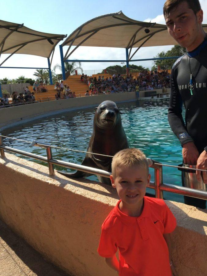Cannes - marineland antibes sea lion
