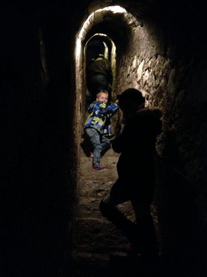Castelul Peles si Castelul Bran - bran stairs