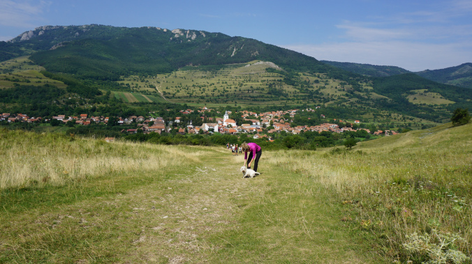 Coltesti - rimetea view