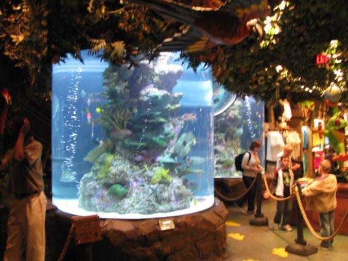 Las Vegas - aquarium