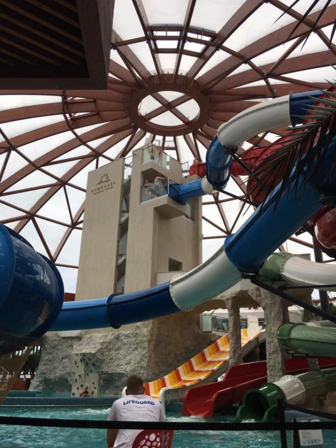 Nymphaea - indoor slides