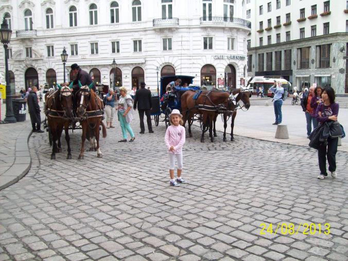 Viena - stephanplatz hourses