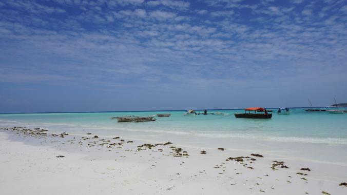Zanzibar Tanzania - mnemba boats