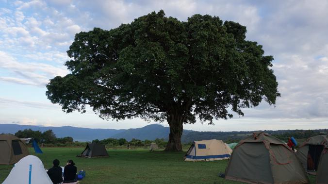 ngorongoro - camping