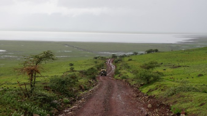 ngorongoro - road