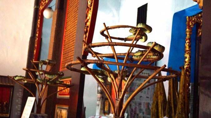 Penang - snake temple1