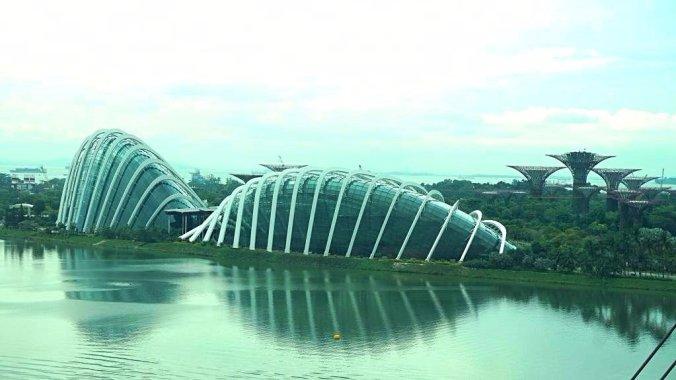 Singapore - Botanical garden