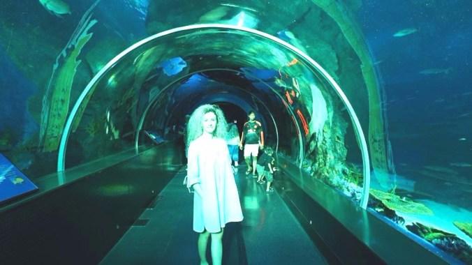 Singapore - Sentosa aquarium1