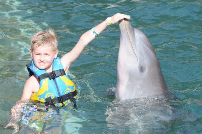 St. Kitts si Nevis - dolphin greet