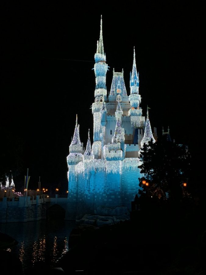 Magic Kingdom15