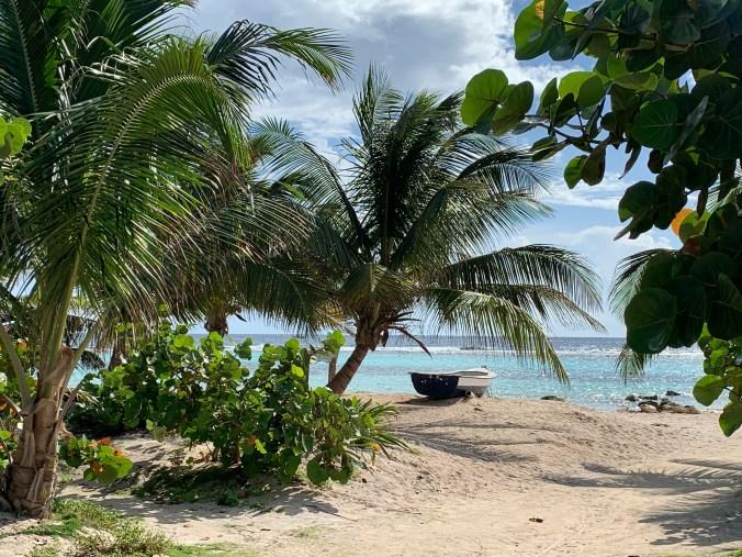 Mexic - Costa Maya beach1