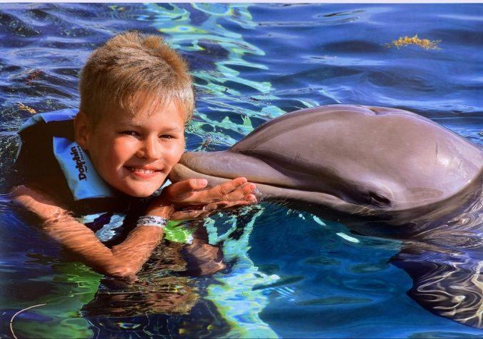 Cozumel - chankannab park dolphin