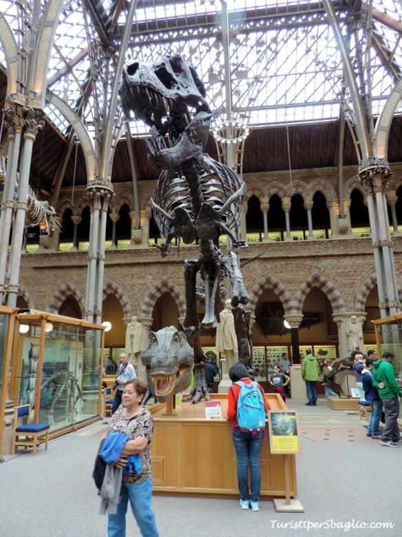 UK 2014 - Oxford - Museum of Natural History - 04_new