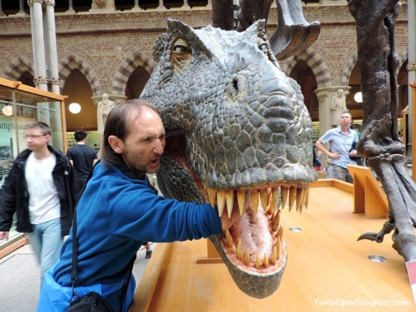 UK 2014 - Oxford - Museum of Natural History - 05_new