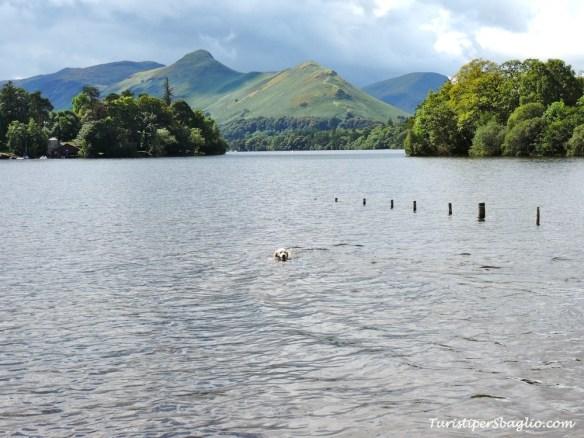 UK 2014 - Lake District Derwent Water, Walla Crag, Keswick - 019_new