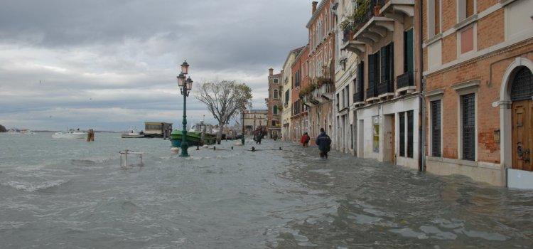 Venezia, la città degli uomini-pesce