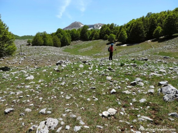 Parco Nazionale del Pollino - 07