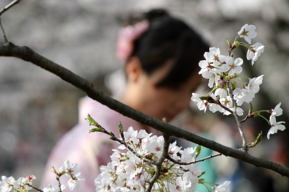Pensieri-sparsi-sul-Giappone1