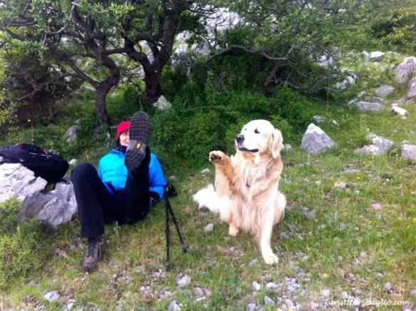 Acquafredda di Maratea, Passo Colla - 23_new