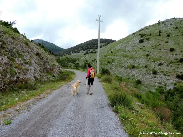 Acquafredda di Maratea, Passo Colla - 75_new