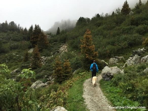Escursione al lago di Crozet, Grenoble - 019 bis