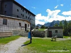 Hiking on Lake Bohinj Slovenia - 31_new