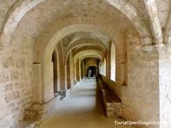 Linguadoca - San Guglielmo nel Deserto - Saint-Guilhem-le-Désert - 58_new
