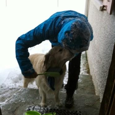 Una spazzatina al cane..._new