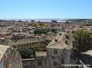 Aigues-Mortes Borgo Fortificato Linguadoca - 19