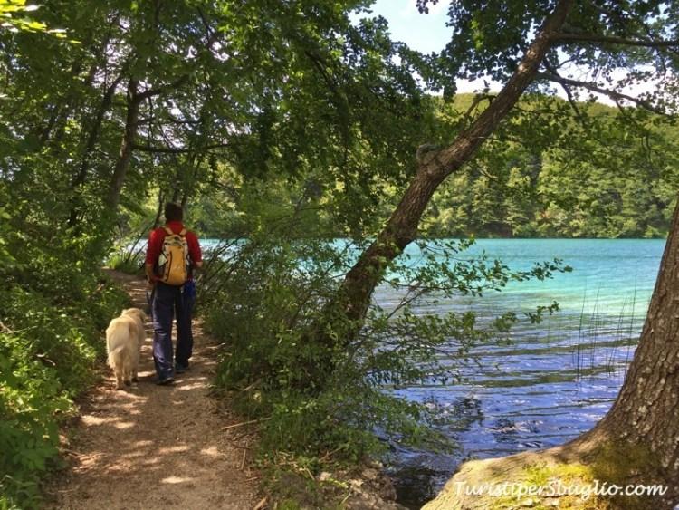 Laghi di Plitivice IP, Parco Nazionale - Croazia - 18