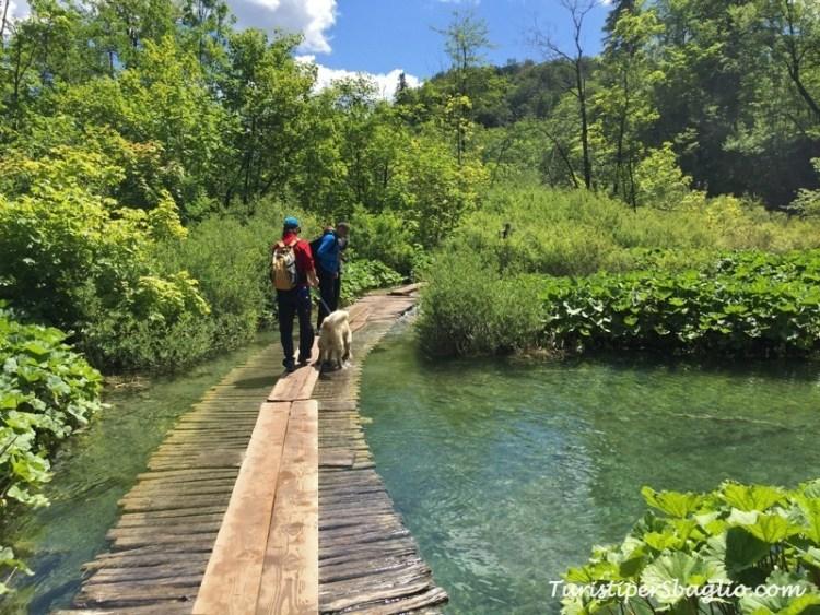 Laghi di Plitivice IP, Parco Nazionale - Croazia - 50