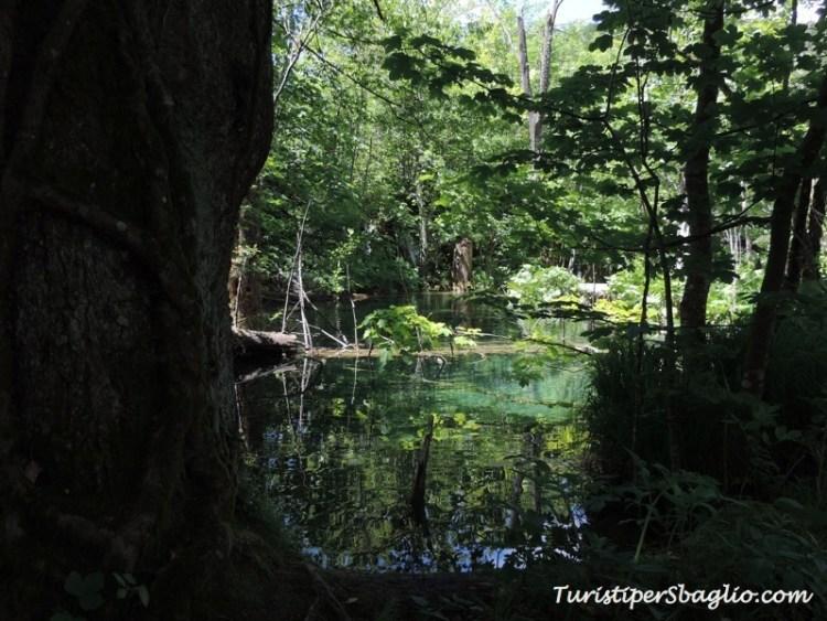 Laghi di Plitivice, Parco Nazionale - Croazia - 055
